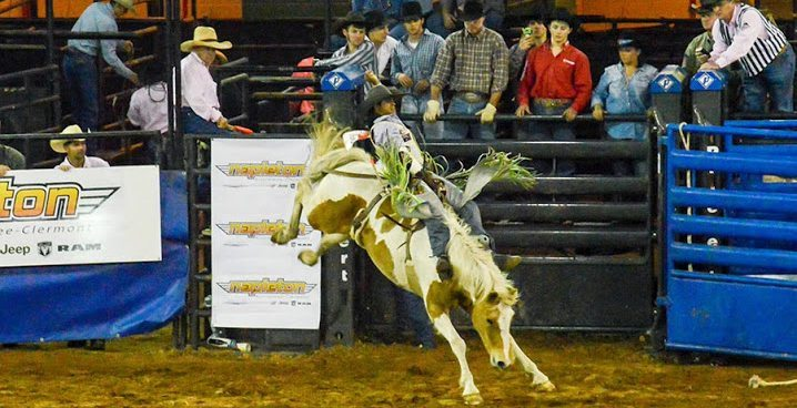 Silver Spurs Rodeo announces 135th rodeo event on June 5th and 6th in Kissimmee - Bull Riding - Silver Spurs Rodeo