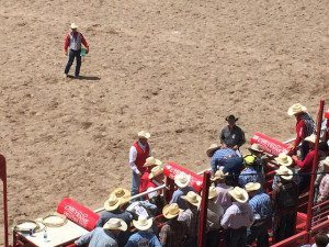 Steve Knowles at Cheyenne Frontier Days