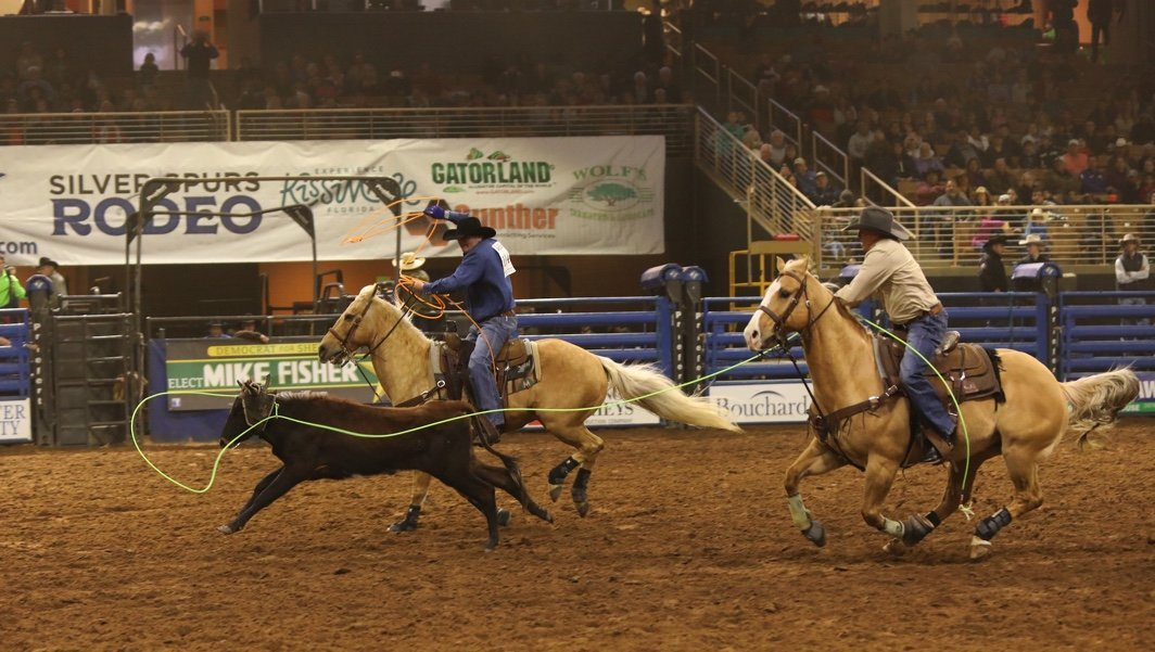 team roping at the silver spurs rodeo