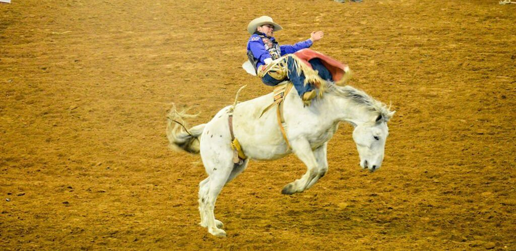 The Differences Between Bareback And Saddle Bronc Riding
