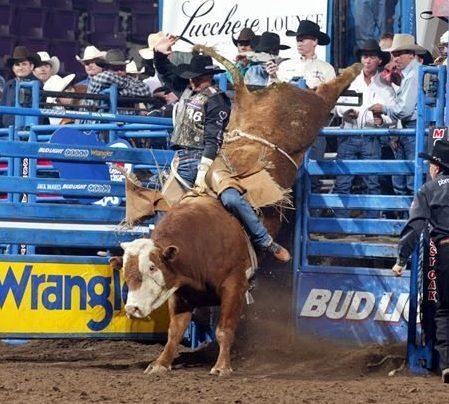 rodeo in Orlando past Silver Spurs champions