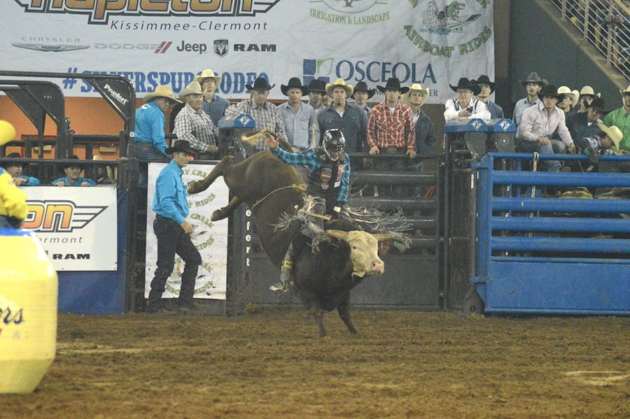Bull riding at Silver Spurs Rodeo