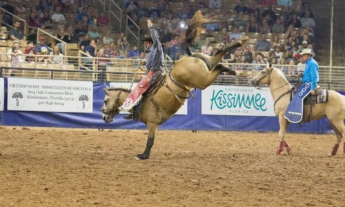 saddle bronc riding in florida