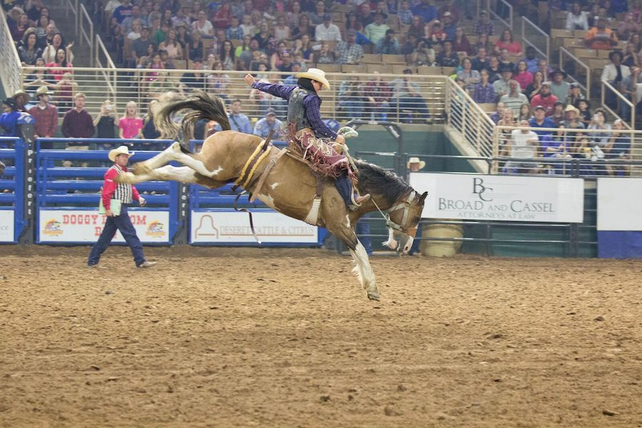 Saddle Bronc Riding at the Silver Spurs Arena