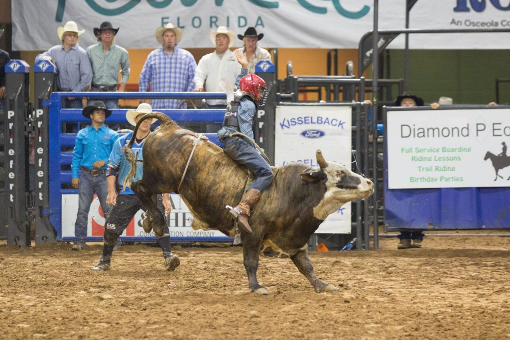 Junior bull riding at Silver Spurs