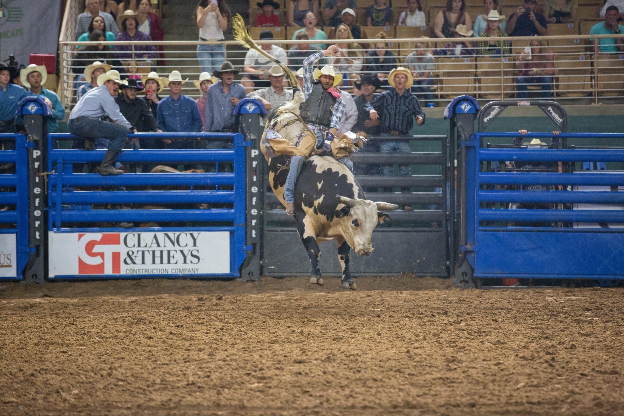 Bull Riding - Rodeos in Florida