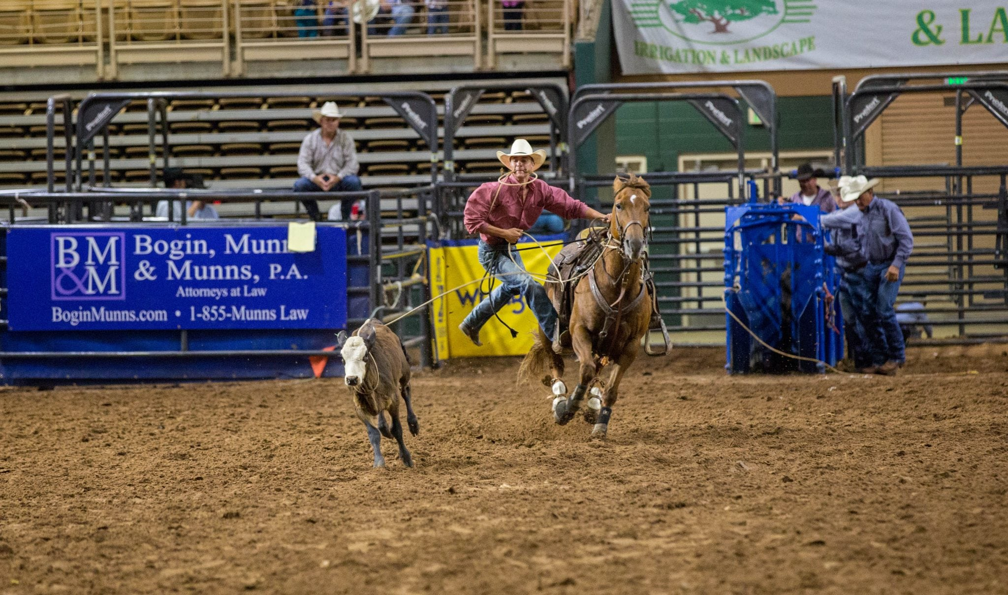 Tie Down Roping - Rodeos in Kissimmee